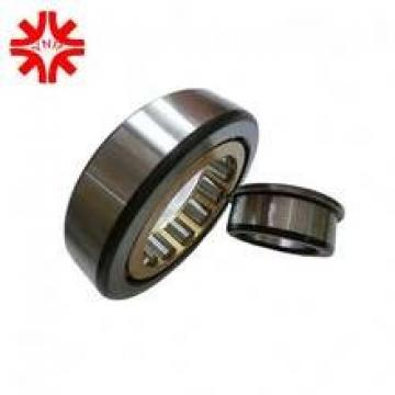 NJ224 E Cylindrical Roller Bearing NJ-224E 120x215x40 mm