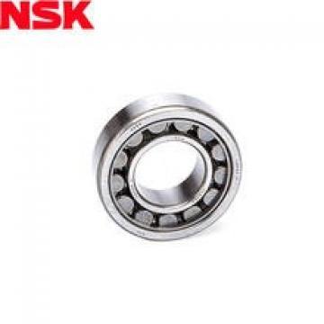 NU 224 EM Cylindrical roller bearing NSK NU224 EM Bearing Size 120x215x40
