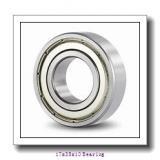 W 6003 Bearings 17x35x10 mm Ball Bearing Stainless Steel Deep Groove Ball Bearing W6003