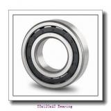 NJ2311 High quality agricultural machinery cylindrical roller bearing NJ2311ECP/C4VQ015 Size 55X120X43