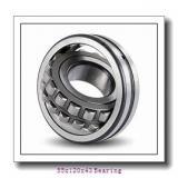22311 CAME4C4U15-VS Vibrating Screen Bearings 22311CAME4C4U15-VS Spherical Roller Bearings